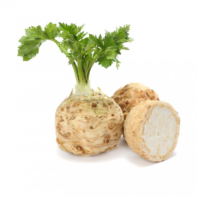 Celeriac Head
