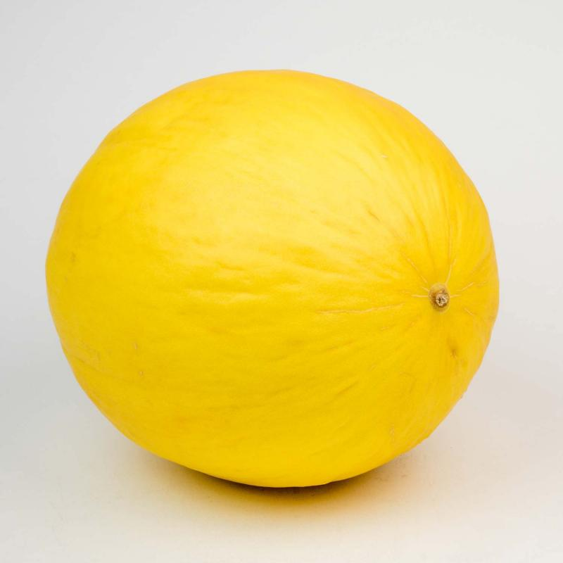 Melon (HoneyDew)